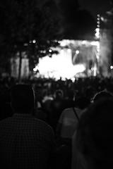 DSC_0788 (cristianogelato) Tags: musicians concert music livemusic live singer band rock photography guitar musician festival indie tour gig artist