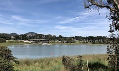 #LakeMerced #Walk in #SanFrancisco (Σταύρος) Tags: sanfrancisco walk lakemerced thecity sfist thelake beautifulday sunday june9 exercise cardio parkmerced