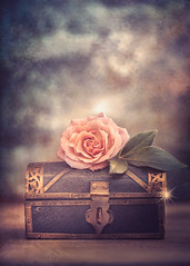 The treasure chest (Ro Cafe) Tags: stilllife flower rose selectivefocus blur bokeh dof romantic vintage pastelcolors softcolors softlight helios58mmf2 extensiontubes nikond600 textured