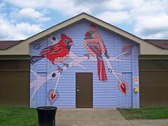 OH Hamilton - Mural 15 (scottamus) Tags: hamilton ohio butlercounty mural painting art building graffiti birds cardinals