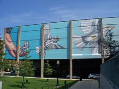 OH Hamilton - Mural 11 (scottamus) Tags: hamilton ohio butlercounty mural painting art building graffiti birds