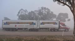 Lindsays (quarterdeck888) Tags: trucks truckies transport australianroadtransport roadtransport lorry primemover bigrig overtheroad class8 heavyvehicle highway road truckphotos nikon d7100 movingtrucks jerilderietrucks jerilderietruckphotos quarterdeck frosty expressfreight generalfreight logistics overnightfreight highwayphotos semitrailer semis semi flickr flickrphotos australiantrucks fog heavyfog parkingbay lindsay lindsays lindsayaustralia lindsaytransport lindsaybros maxicube fridgevan bdouble kenworth australiankenworth t610 t610aero 610 kenwortht610