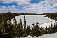 Lewis Lake (Daniel auf Weltreise) Tags: lewislake lake amerika usa eis frozen gefroren yellowstonenationalpark yellowstone nationalpark