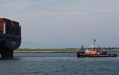 Liberty (jelpics) Tags: everleader evergreen containership tug tugboats liberty cargoship merchantship commercialship boat bos boston bostonharbor bostonma harbor massachusetts ocean port ship sea vessel