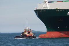 Freedom (jelpics) Tags: everleader evergreen containership tug tugboats freedom cargoship merchantship commercialship boat bos boston bostonharbor bostonma harbor massachusetts ocean port ship sea vessel