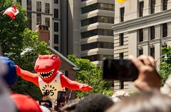 Raptor's Mascott (Bob (sideshow015)) Tags: parade raptors toronto ontario canada basketball sports nikon 7100 mascot