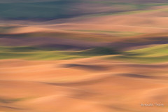 Field of Dreams #3 (brendatharp) Tags: motionblur impression art palouseregion fineartprint day outdoor agriculture countryside crops wild outside wallart intentionalcameramotion fields greetingcard daytime palouse horizontal region walldecor farming rural