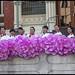 Ladies on Parade Albert St Uniting Church-3=