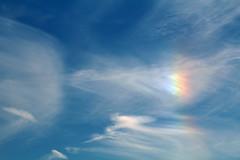 juneIris4 (GrfxDziner) Tags: iris rainbow iridescent cloud iridescentcloud grfxscreencap grfxdziner dc kerimccarthydrive gwennie2006 dcmemorialfoundation canon rebel t6 rebelt6 eos efs 75300mm