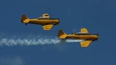 Anglų lietuvių žodynas. Žodis airshow reiškia n figūrinio skraidymo programa lietuviškai.