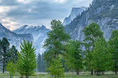 From the Valley Floor (Kirk Lougheed) Tags: california usa unitedstates yosemite yosemitenationalpark landscape nationalpark outdoor park spring yosemitevalley halfdome