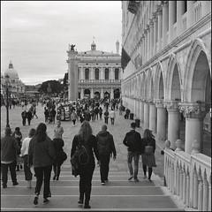 Venice (Koprek) Tags: rolleiflex28f film analog 6x6 120 venice ilfordhp5 italy streetphotography stphotographia stphotography street 2019 may