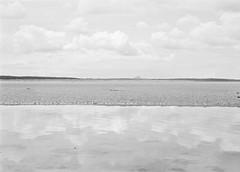 Biel Water mouth (25/8) Tags: olympus penf adox cms20ii adoteciv