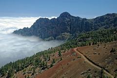Above the clouds (Tjaldur66) Tags: mountains highfog naturereserve naturepark tenerife spain travel outdoor lookout landscape scenery peaks rockwall forest wilderness