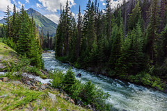 810_3197 (FNshutter) Tags: nikond810 d810 nikor20mm18g river rapids mountains trees rock bc scenic
