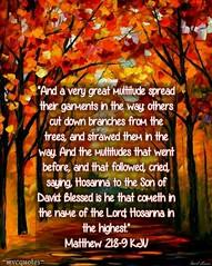 #KJV #KJVBible #Bible #BibleVerse #Word #Scripture #VerseOfTheDay #GOD #YHWH #JesusChrist #Messiah #YeshuaHaMashiach #HolySpirit #RuachHaKodesh #ReadItInItsContext #ConsultTheWord #Peace #Believe #Hope #Faith #Salvation #mvcquotes #WelcomeToShare ✝:cherry (mvcquotes3) Tags: hope jesuschrist mvcquotes welcometoshare verseoftheday salvation word yeshuahamashiach god yhwh bible messiah scripture faith holyspirit kjv readitinitscontext kjvbible ruachhakodesh believe consulttheword peace bibleverse