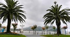 Nublado en Donostia (eitb.eus) Tags: eitbcom 32961 g151098 tiemponaturaleza tiempon2019 fenomenosatmosfericos gipuzkoa donostiasansebastian jonhernandezutrera