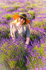 Lavender #4 (paweł28) Tags: nikond90 poland violet lavender nikkor 50 mm sigma 1850