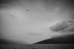 Fighter wing (GlebLv) Tags: sony a7m3 sel70200g lake mountains ducks italy lakegarda lombardia monochrome bw nb