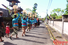 Locals Carrying the Offerings (Real Indonesia) Tags: bali indonesia local culture offerings ubud