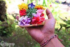 Canang Sari (Real Indonesia) Tags: bali canang sari indonesia flower offerings local culture