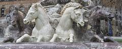 Wild Horses (grasso.gino) Tags: italien italy italia toskana toscana tuscany florzenz firenze nikon d7200 brunnen foutain pferde horses detail