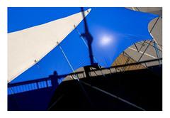 48 [titre little selfy] (Armin Fuchs) Tags: arminfuchs lavillelaplusdangereuse würzburg africafestival tent blue light shadows diagonal fujixt3 talavera friedensbrücke anonymousvisitor thomaslistl wolfiwolf jazzinbaggies velvia fence hff