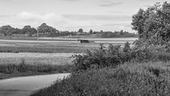 'landscape (R. Henne) Tags: blackandwhite bw sw monochrome nikon tamron d300 90mm