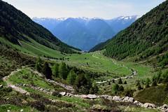 """Valle di Postalesio - Passo Caldenno (Giorsch) Tags: italien italy mountain alps montagne landscape italia hiking berge di alpen landschaft alpi lombardia wandern paesaggio valtellina lombardy lombardei veltlin """"media """"valle """"passo """"provincia caldenno """"alpe """"paesaggio """"torrente """"prato """"pra montuoso"""" valtellina"""" sondrio"""" postalesio"""" caldenno"""" isio"""" maslino"""" palu"""""""