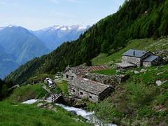 """Valle di Postalesio - Passo Caldenno (Giorsch) Tags: italy italien italia lombardei lombardia alpen alps alpi valtellina veltlin """"media valtellina"""" """"provincia di sondrio"""" """"valle postalesio"""" landscape landschaft lombardy berge mountain montagne paesaggio wandern hiking """"paesaggio montuoso"""" """"torrente caldenno"""" """"prato isio"""" """"pra maslino"""" """"alpe caldenno palu"""" """"passo"""