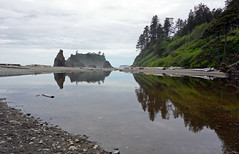 Ruby Beach, Olympic National Park, WA (SomePhotosTakenByMe) Tags: rubybeach beach strand nature natur usa america amerika unitedstates outdoor olympicnationalpark olympic national park nationalpark washington meer ocean pacific sea pazifik baum tree water reflection spiegelung
