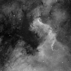 NGC7000 Ha (sergiy.vakulenko) Tags: astronomy astrophotography astrophoto deepsky dso space sky stars nebula ed80 atik383l ha narrowband ngc7000 north america