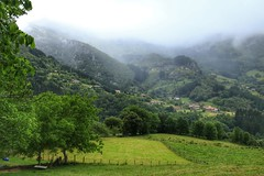 Mañaria (eitb.eus) Tags: eitbcom 21786 g151111 tiemponaturaleza tiempon2019 primavera bizkaia mañaria victoruriarte