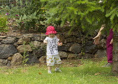 playing chasey (louisa_catlover) Tags: garden outdoor nature mtwilson bluemountains nsw australia summer january portrait child family toddler daughter tabitha tabby