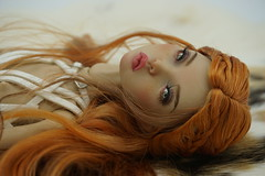 LRG_DSC06295 (Jelezrael) Tags: bjd doll msd 14 popovy sisters little owl amadiz wig