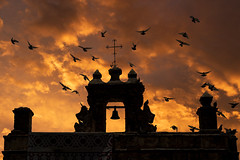 Capilla del Cristo (guillecabrera) Tags: silhouette silueta atardecer capilla chapel pigeons palomas oldsanjuan viejosanjuan puertorico sony a7iii tamron 2875mmf28e colonial historic spanish
