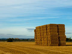 Hay Bales (me.darren) Tags: grass ruralarea hay crop sky farm plain straw harvest field dry landscape haystack nature land rural countryside summer country wheat farmland bale blue stack farming