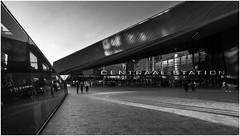 Rotterdam Central Station (Rob Schop) Tags: blackandwhite monochrome goldenhour rotterdam wideangle street composition backlit people lines sonya6000 samyang12mmf20 singleexposure handheld