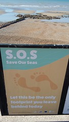 20190620_083341 (tod20@rocketmail.com) Tags: save our seas