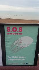 20190619_083857 (tod20@rocketmail.com) Tags: save our seas