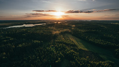 Above trees (Baho77) Tags: sony zoom above sky sunset clouds field country countryside cloud hämeenlinna hameenlinna hotairballoon a7r a7rmk2 tessar 1635 trees tree evening lake water suomi drone droneview landscape finland