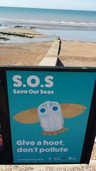 20190620_083206 (tod20@rocketmail.com) Tags: save our seas