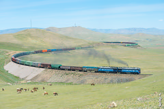 I love long train ... (N.Batkhurel) Tags: season summer sky locomotive landscape trains trainspotting railway railfan animals horse freighttrain curve diesellocomotive mongolia monrailpic mountian ngc nikon nikondf nikkor 24120mm 2te116um