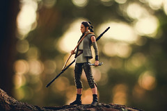 """It's not about what you have now, it's what you have in store"" (Leo Goubine) Tags: starwarssaga starwars starwarstheblackseries starwarsactionfigures actionfigures toyphotography bokeh rey theforceawakens thelastjedi toyphotographer"
