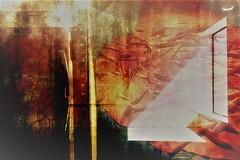 hersen - spinsel (roberke) Tags: digitalart artistic creation creative creatief photomontage photoshop surreal fantasy layers textures textuur lagen window raam