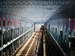 subway (m_laRs_k) Tags: cof subway architexture train bridge usa brooklyn manhattan walkway tele 35100 olympus lumix omd 19miles 纽约 ньюйо́рк cof075uki cof075lep cof075mire cof075dmnq cof075judi cof075chri mlarsk