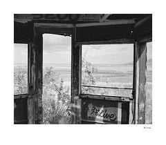Alive (agianelo) Tags: railcar ruins lake vista window monochrome bw bn blackandwhite