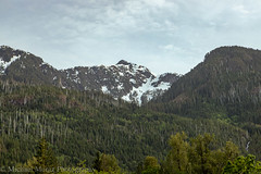 Snow On The Mountains (Michael Muntz Photography) Tags: vancouverisland nanaimo bc canada trip vacation trees green spring summer seasonal nature landscape outdoors earth