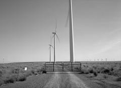 Wind Turbines, Washington (austin granger) Tags: wind turbines gate washington dirtroad gravel energy topography film gsw690