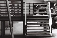 Stairs (Thanathip Moolvong) Tags: nikon fe kodak tmax 100 film
